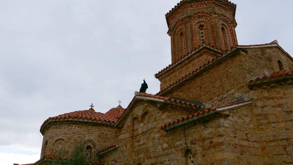 cerkiew św. Nauma - pawie są wszędzie